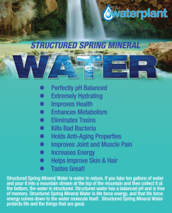 Structured Spring Mineral Water
